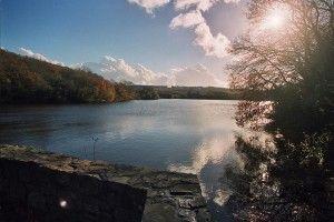 Dirinon étang du Roual